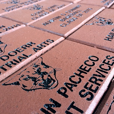Tell Your Story with a Brick Campaign